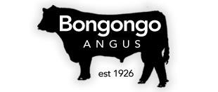 logo-bongongo-angus