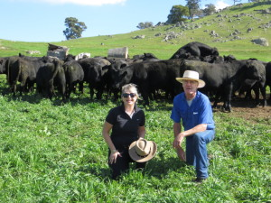 Bill & Shauna with Autumn Sale Bulls 2014