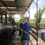 the girl's washing bulls for Sprring sale 2011