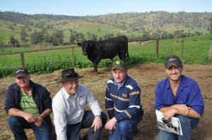 Steve Harris, Ian and Mark Mawhood Sunny Point Pastoral Co Oberon with Tom Graham Bongongo Angus with one of the top priced bulls Bongongo H724