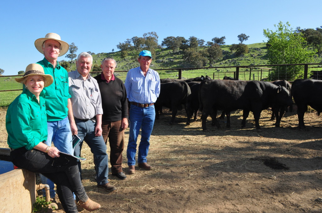 Buyers of equal top price bulls at Bongongo Spring sale 2015 Renato Gaspari Coots creek Angus Yass and Paul Ferry and Garry Williamson Abingdon Station Nangus with Shauna and Bill Graham. Photo Cara Jeffery The Land.
