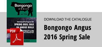 download-2016-sale-catalogue-with-screenshot